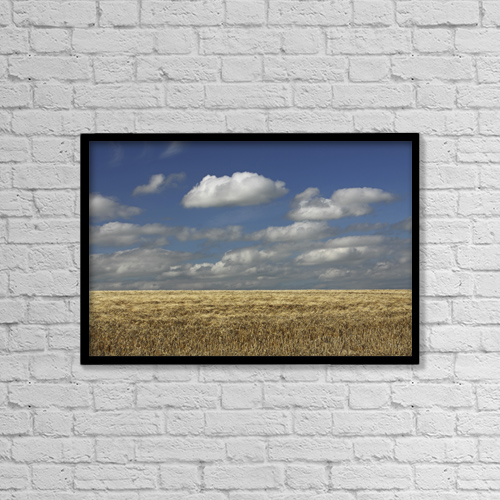 """Printscapes Wall Art: 18"""" x 12"""" Canvas Print With Black Frame - A Barley Field In East Cork In Munster Region by Trish Punch"""