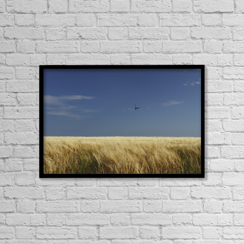 """Printscapes Wall Art: 18"""" x 12"""" Canvas Print With Black Frame - Animals by Trish Punch"""