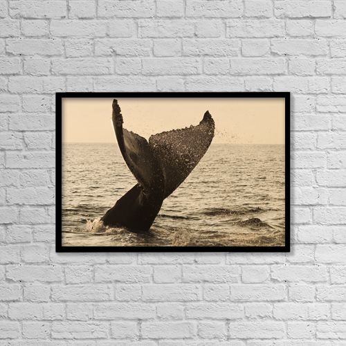 """Printscapes Wall Art: 18"""" x 12"""" Canvas Print With Black Frame - Scenic by Dave Fleetham"""