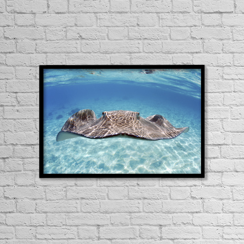"Printscapes Wall Art: 18"" x 12"" Canvas Print With Black Frame - Animals by M Swiet Productions"