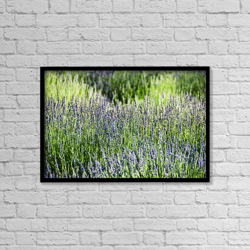"Printscapes Wall Art: 18"" x 12"" Canvas Print With Black Frame - Nature by Ray Laskowitz"