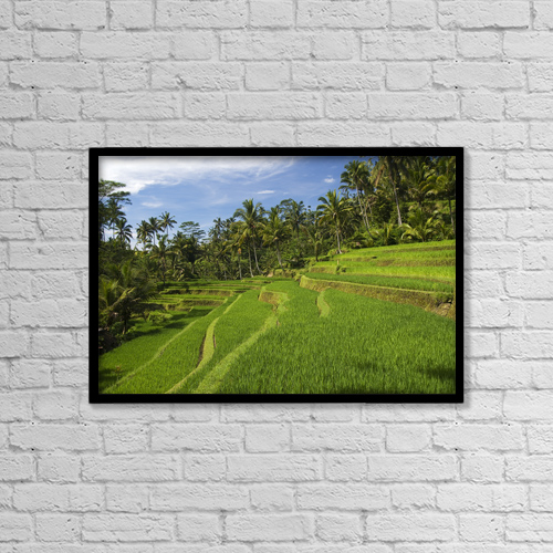 "Printscapes Wall Art: 18"" x 12"" Canvas Print With Black Frame - Indonesia, Rice Terraces; Bali by Richard Maschmeyer"