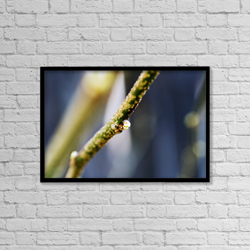 """Printscapes Wall Art: 18"""" x 12"""" Canvas Print With Black Frame - Cottonwood Tree, Tiny Bud On Branch by Ray Laskowitz"""