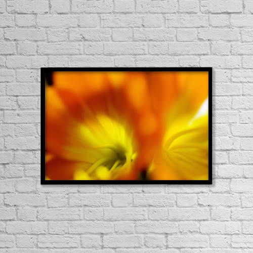 "Printscapes Wall Art: 18"" x 12"" Canvas Print With Black Frame - Extreme Close-Up Of Two Orange Day Lilies by Ray Laskowitz"