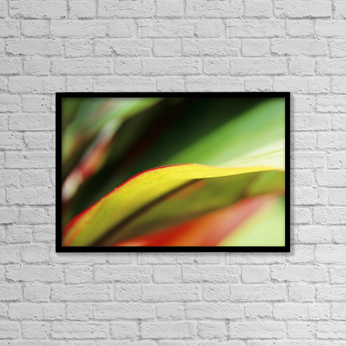 "Printscapes Wall Art: 18"" x 12"" Canvas Print With Black Frame - Hawaii, Abstract Close-Up Of Ti-Leaf by Robert Sablan"