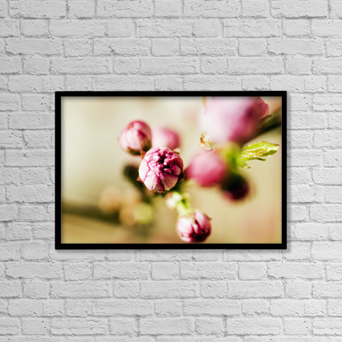 "Printscapes Wall Art: 18"" x 12"" Canvas Print With Black Frame - Close-up of Pink Budding Flower by Ray Laskowitz"