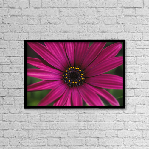 """Printscapes Wall Art: 18"""" x 12"""" Canvas Print With Black Frame - Nature by Mary Van de Ven"""