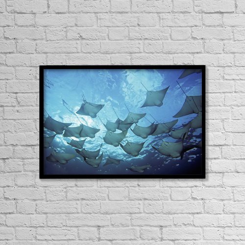 "Printscapes Wall Art: 18"" x 12"" Canvas Print With Black Frame - Ecuador, vie from below by Dave Fleetham"