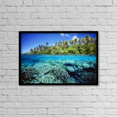"Printscapes Wall Art: 18"" x 12"" Canvas Print With Black Frame - Micronesia, Coral reef; Pohnpei by Dave Fleetham"