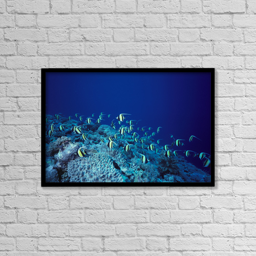 """Printscapes Wall Art: 18"""" x 12"""" Canvas Print With Black Frame - Animals by Ed Robinson"""