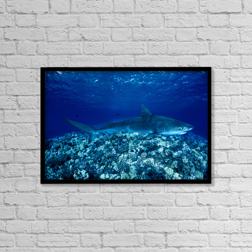 "Printscapes Wall Art: 18"" x 12"" Canvas Print With Black Frame - Sports and Recreation by Dave Fleetham"