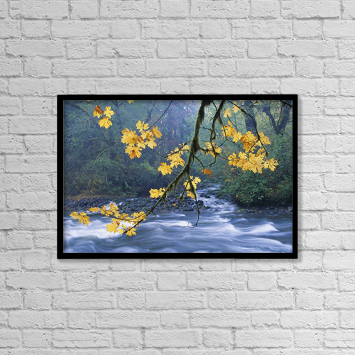 "Printscapes Wall Art: 18"" x 12"" Canvas Print With Black Frame - Nature by Carl Shaneff"