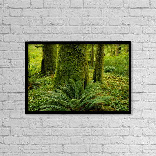 "Printscapes Wall Art: 18"" x 12"" Canvas Print With Black Frame - Nature by John Sylvester"