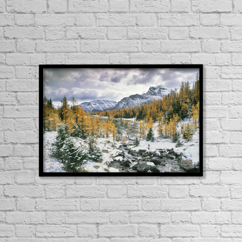 "Printscapes Wall Art: 18"" x 12"" Canvas Print With Black Frame - Larch Valley, Banff National Park, Alberta by Darwin Wiggett"