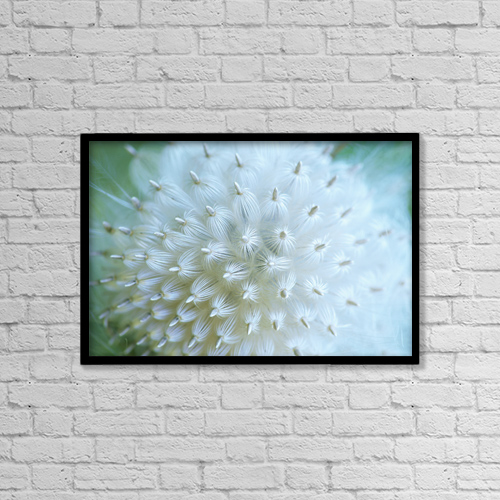 "Printscapes Wall Art: 18"" x 12"" Canvas Print With Black Frame - Close Up Of Mature Seed Pod by Ron Watts"