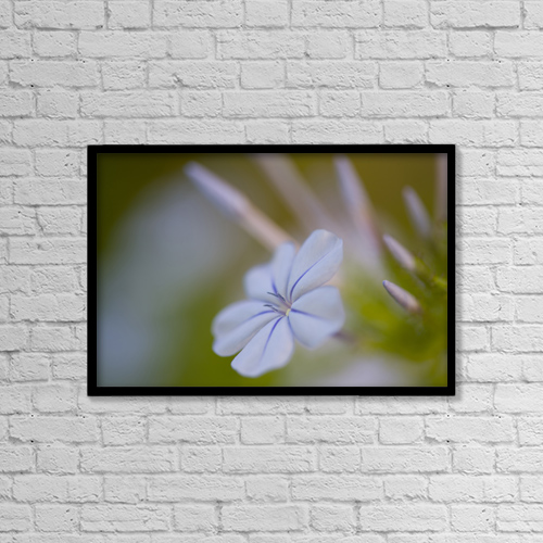 "Printscapes Wall Art: 18"" x 12"" Canvas Print With Black Frame - Creative Imagery by Peter Van Rhijn"