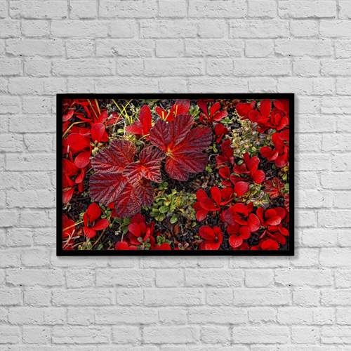 """Printscapes Wall Art: 18"""" x 12"""" Canvas Print With Black Frame - Other by Robert Postma"""