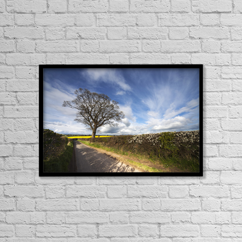 "Printscapes Wall Art: 18"" x 12"" Canvas Print With Black Frame - Hedges Growing Along A Rural Road by John Short"