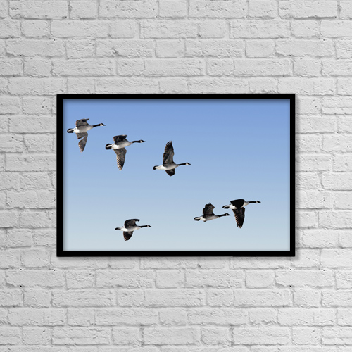 "Printscapes Wall Art: 18"" x 12"" Canvas Print With Black Frame - Animals by Doug Hamilton"