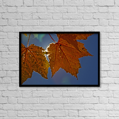 """Printscapes Wall Art: 18"""" x 12"""" Canvas Print With Black Frame - Fall Colors And Sunshine, Ontario by Robert Postma"""