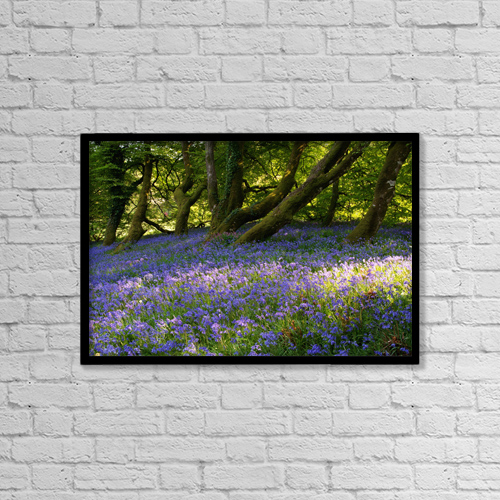 "Printscapes Wall Art: 18"" x 12"" Canvas Print With Black Frame - Mount Congreve Gardens by Peter Zoeller"