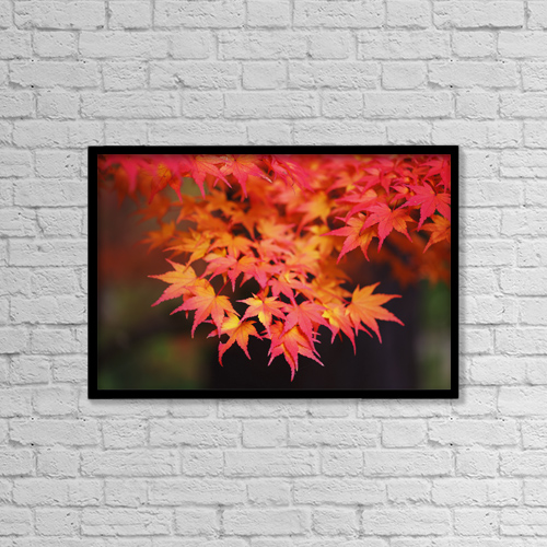 """Printscapes Wall Art: 18"""" x 12"""" Canvas Print With Black Frame - Autumn colours by Craig Tuttle"""
