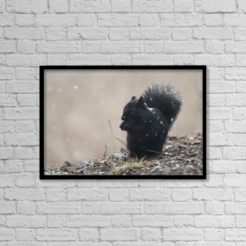 """Printscapes Wall Art: 18"""" x 12"""" Canvas Print With Black Frame - Animals by Amy Kay"""