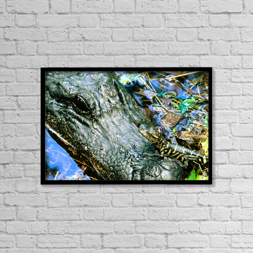 """Printscapes Wall Art: 18"""" x 12"""" Canvas Print With Black Frame - Lifestyle by Philippe Henry"""