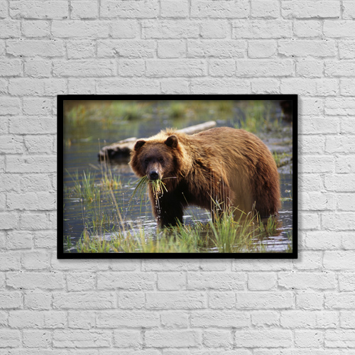 "Printscapes Wall Art: 18"" x 12"" Canvas Print With Black Frame - Food by Doug Lindstrand"