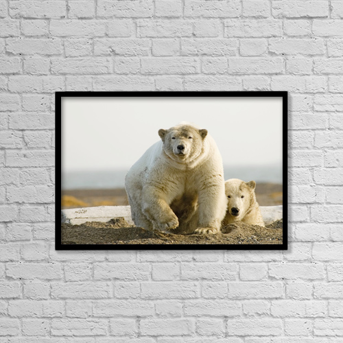 "Printscapes Wall Art: 18"" x 12"" Canvas Print With Black Frame - Animals by Nick Jans"