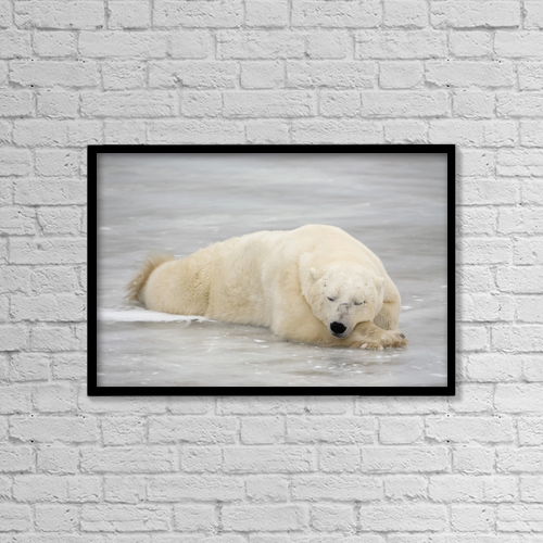 """Printscapes Wall Art: 18"""" x 12"""" Canvas Print With Black Frame - Animals by Tom Soucek"""