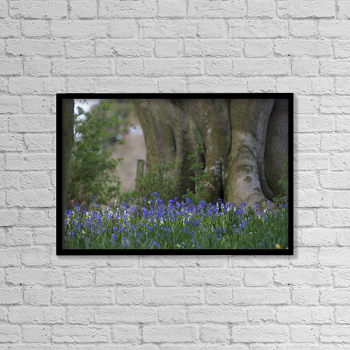 "Printscapes Wall Art: 18"" x 12"" Canvas Print With Black Frame - Blue flowers blossoming by John Short"