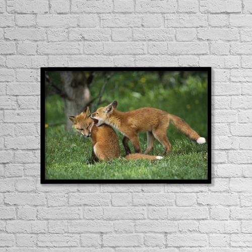 "Printscapes Wall Art: 18"" x 12"" Canvas Print With Black Frame - Sports and Recreation by Doug Lindstrand"