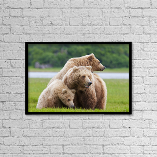 "Printscapes Wall Art: 18"" x 12"" Canvas Print With Black Frame - Lifestyle by Kent Fredriksson"