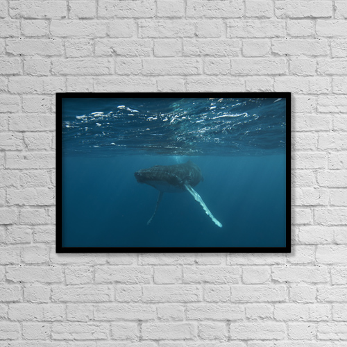 """Printscapes Wall Art: 18"""" x 12"""" Canvas Print With Black Frame - Sports and Recreation by Tom Soucek"""