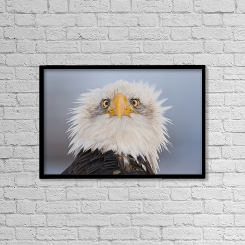 "Printscapes Wall Art: 18"" x 12"" Canvas Print With Black Frame - Animals by Kent Fredriksson"