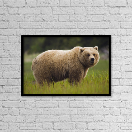 "Printscapes Wall Art: 18"" x 12"" Canvas Print With Black Frame - Nature by Matt Hage"
