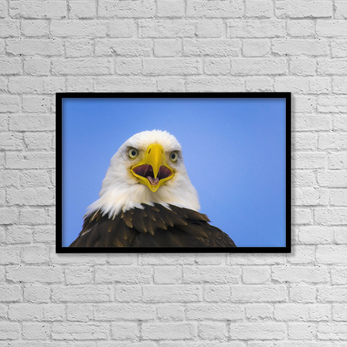 "Printscapes Wall Art: 18"" x 12"" Canvas Print With Black Frame - Animals by Daryl Pederson"