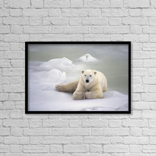 "Printscapes Wall Art: 18"" x 12"" Canvas Print With Black Frame - Animals by Jo Overholt"