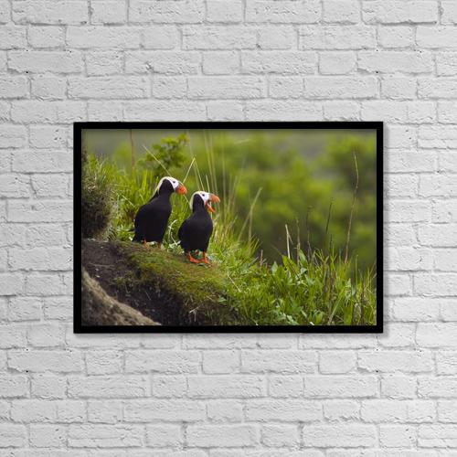 "Printscapes Wall Art: 18"" x 12"" Canvas Print With Black Frame - Animals by Brian Guzzetti"
