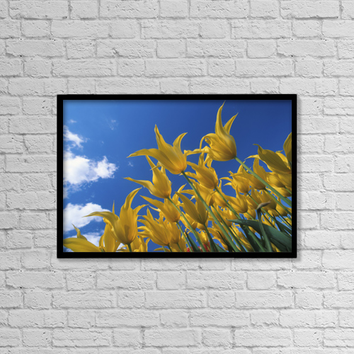 "Printscapes Wall Art: 18"" x 12"" Canvas Print With Black Frame - Nature by John Warden"