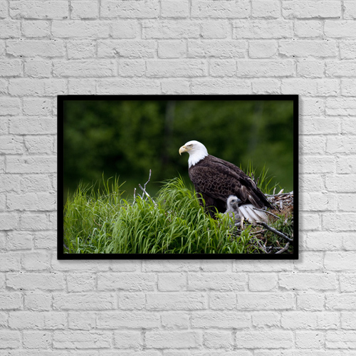 "Printscapes Wall Art: 18"" x 12"" Canvas Print With Black Frame - Lifestyle by Cathy Hart"