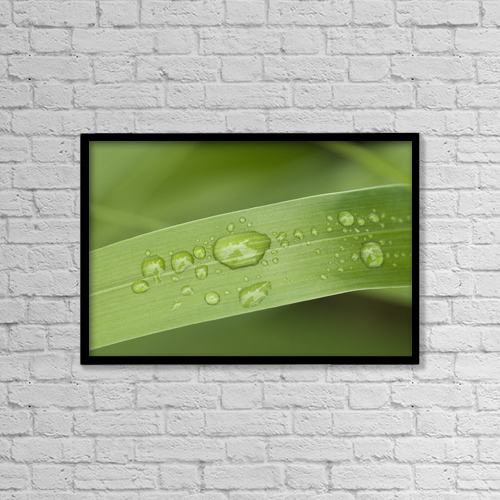 "Printscapes Wall Art: 18"" x 12"" Canvas Print With Black Frame - Nature by Cathy Hart"