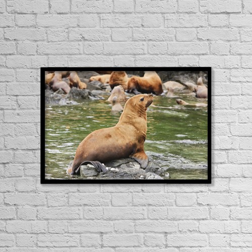 "Printscapes Wall Art: 18"" x 12"" Canvas Print With Black Frame - Animals by Ray Bulson"