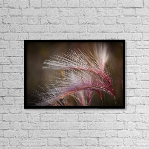 "Printscapes Wall Art: 18"" x 12"" Canvas Print With Black Frame - Nature by Ken Baehr"