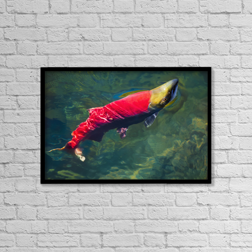 "Printscapes Wall Art: 18"" x 12"" Canvas Print With Black Frame - Marine Life by Debra Brash"