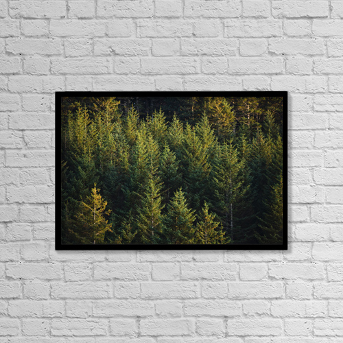 "Printscapes Wall Art: 18"" x 12"" Canvas Print With Black Frame - Nature by Kevin G. Smith"