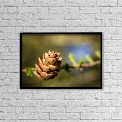 """Printscapes Wall Art: 18"""" x 12"""" Canvas Print With Black Frame - Nature by Kevin G. Smith"""