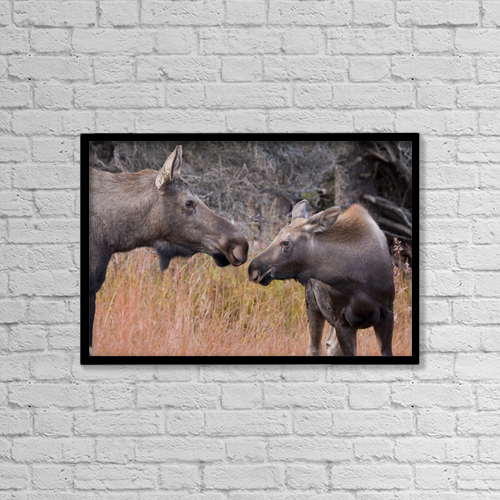 "Printscapes Wall Art: 18"" x 12"" Canvas Print With Black Frame - Lifestyle by Lynn Wegener"