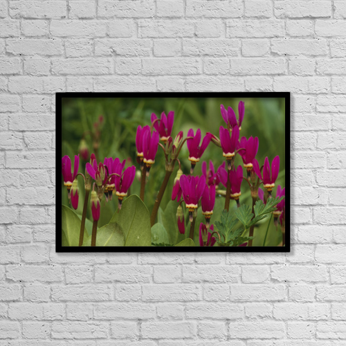 "Printscapes Wall Art: 18"" x 12"" Canvas Print With Black Frame - Nature by Nicholas Fucci"